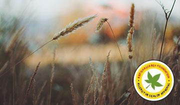Forzaspira Lecologico Allergy_Parquet - Certificato da British Allergy Foundation